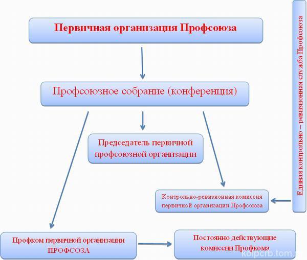 первичные профсоюзные организации